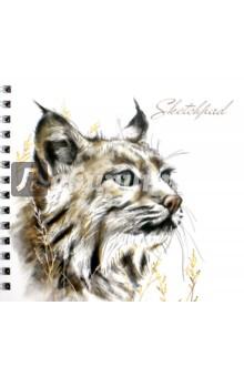 """Скетчпад (альбом для эскиз) """"Дикие кошки""""(80 листов, гребень) (44501) Феникс+"""