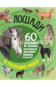 ЛошадиЖивотный и растительный мир<br>В книге Лошади. 60 лошадей и пони, которых должен каждый! серии Я познаю мир! читатели найдут увлекательный рассказ о самом удивительном и важном домашнем животном, без которого невозможно представить себе историю человечества и которое в сегодняшние дни занимает огромное место в наших сердцах - лошади.<br>Для младшего школьного возраста.<br>