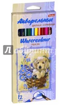 Карандаши цветные акварельные Щенок (12 цветов) (BKa_12340)Цветные карандаши 12 цветов (9—14)<br>Карандаши цветные акварельные.<br>В наборе 12 цветов.<br>Яркие цвета.<br>Мягкое письмо.<br>Легко затачиваются.<br>Удобная шестигранная форма.<br>Не токсичны.<br>Обладают эффектом акварельных красок.<br>Состав: дерево, графит.<br>Не рекомендуется детям до 3-х лет.<br>Сделано в Китае.<br>