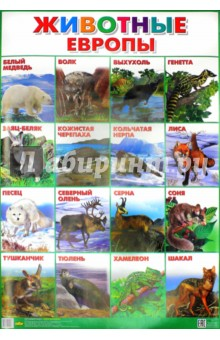 """Плакат """"Животные Европы"""" (550х770)"""