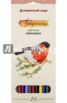 Карандаши цветные, акварельные Птицы Сибири, 24 цвета (СК083/24)Цветные карандаши более 20 цветов<br>Карандаши цветные, акварельные Птицы Сибири, 24 цвета.<br>Упаковка: коробка с подвесом, картон. <br>Корпус изготовлен из высококачественной древесины сибирского кедра. <br>Яркие цвета, отличные кроющие свойства. <br>Высококачественный ударопрочный грифель. <br>Легкое затачивание.<br>Устойчивы к выцветанию.<br>