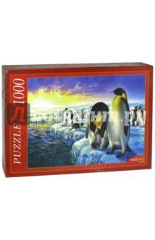 Puzzle-1000. Семьи пингвинов (МГ1000-7396)Пазлы (1000 элементов)<br>Пазлы - популярная занимательная игра, которая развивает мелкую моторику рук, память, внимание посредством собирания яркой и красочной картинки, состоящей из мелких деталей. <br>Серия 1000 элементов - это огромное разнообразие дизайнов - города и страны, животные и птицы, искусство и живопись и многое-многое другое. <br>Количество элементов: 1000.<br>Размеры собранной картинки: 68,5x48,5 см.<br>Материал: картон.<br>Упаковка: картонная коробка.<br>Сделано в России.<br>