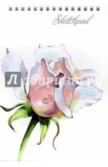 Скетчпад (альбом для эскизов) Нежные цветы (60 листов, гребень) (45026)Блокноты большие нелинованные<br>Альбом для эскизов.<br>Формат: 142х212 мм.<br>Количество листов: 60.<br>Крепление: гребень.<br>Сделано в России.<br>