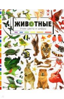 Животные. Учим цвета и цифрыЗнакомство с фигурами<br>Вы держите в руках уникальную книгу, которая познакомит вашего малыша с основными цветами. Яркие картинки помогут удержать внимание маленького читателя и развить его воображение.<br>Ребенок познакомится с разными животными, а также научится считать до десяти. На каждом развороте находятся задания найти и показать определенное количество животных.<br>
