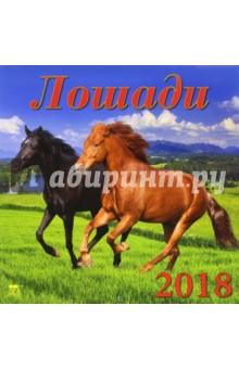 Календарь на 2018 год Лошади (70803)Настенные календари<br>Календарь на 2018 год, настенный, ежемесячный.<br>Бумага мелованная, обложка глянцевая.<br>Крепление: скрепка.<br>Количество листов: 12.<br>Производство: Россия<br>