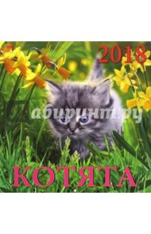 Календарь на 2018 год Котята (70805)Настенные календари<br>Календарь на 2018 год, настенный, ежемесячный.<br>Бумага мелованная, обложка глянцевая.<br>Крепление: скрепка.<br>Количество листов: 12.<br>Производство: Россия<br>