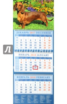 Календарь квартальный на 2018 год Год собаки. Такса среди цветов (14805)Квартальные календари<br>Календарь на 2018 год, настенный, квартальный с пиколло и курсором для выделения текущей даты.<br>Бумага офсетная<br>Обложка глянцевая.<br>Крепление: спираль.<br>Формат: 320х780 мм.<br>Сделано в России.<br>