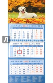 Календарь квартальный на 2018 год Год собаки. Лабрадор ретривер на фоне осеннего пейзажа (14821)Квартальные календари<br>Календарь на 2018 год, настенный, квартальный с пиколло и курсором для выделения текущей даты.<br>Бумага офсетная<br>Обложка глянцевая.<br>Крепление: спираль.<br>Формат: 320х780 мм.<br>Сделано в России.<br>