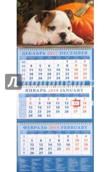 Календарь квартальный на 2018 год Год собаки. Щенок английского бульдога (14825)Квартальные календари<br>Календарь на 2018 год, настенный, квартальный с пиколло и курсором для выделения текущей даты.<br>Бумага офсетная<br>Обложка глянцевая.<br>Крепление: спираль.<br>Формат: 320х780 мм.<br>Сделано в России.<br>