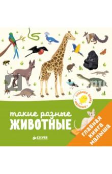 Главная книга малыша. Такие разные животныеЗнакомство с миром вокруг нас<br>Возраст 1+<br>3 фишки:<br>- Любимая игра Найди и покажи для развития внимания<br>- Для родителей, которые уделяют особое внимание раннему развитию <br>- Знакомимся с животными со всего мира<br><br>Красочные иллюстрации с крупными элементами, простой текст, интересные задания - все для того, чтобы малыш учился с удовольствием. Рассматривайте вместе картинки, знакомьте ребенка с окружающим миром. <br><br>В саванне живут слоны, бегемоты, антилопы и львы, в тропиках - тапиры, тигры, шимпанзе, познакомьте ребенка с такими разными животными! Эта книжка большая, картинки яркие и качественные. Малыш может открыть эту книжку и увидеть на каждом развороте - жирафа, буйвола, леопардовую черепаху, а еще увлекательное задание, где ребенку нужно будет отыскать всех животных.<br><br>Книга послужит прекрасным развивающим пособием, ведь именно в игре дети осваивают основные для этого периода навыки - внимательность, воображение и память. А кроме того, удобный небольшой формат позволит вам взять книгу на прогулку или в путешествие.<br><br>Лайфхак для родителей <br>Сначала просто рассматривайте картинки и запоминайте новые слова. Затем, когда малыш начнёт говорить, обсудите с ним зверюшек. Рассматривайте и читайте книги вместе с ребенком, развивая его воображение, словарный запас и мелкую моторику. Изучайте игрушки, играйте с подвижными деталями и объясняйте ребенку значение изображенных в книге предметов. <br><br>Что развиваем?<br>- Речь<br>- Память <br>- Внимание <br>- Любознательность<br>- Пространственное мышление<br><br>Для чтения взрослыми детям.<br>