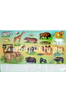 Животные. Настольное изданиеБиология. Справочники. Дополнительные материалы<br>Настольное издание с животными.<br>Цифры и факты.<br>