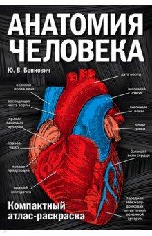 Анатомия человека. Компактный атлас-раскраскаАнатомия и физиология<br>Уникальный, универсальный и компактный атлас анатомии человека под вашими руками из черно-белого станет цветным!<br>Четкая структура, надежная система и оригинальный цветовой ключ позволят не только студентам медицинских вузов быстро выучить анатомию, но и тем, кто просто хочет узнать, как работает наше тело, легко и без усилий выяснить, из чего состоит каждый орган.<br>Визуальные ассоциации и мышечная память, задействованные во время раскрашивания, сделают обучение эффективным, простым и интересным.<br>