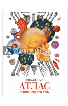 Визуальный атлас человеческого телаАнатомия и физиология<br>Эта книга - прекрасное пособие для всех желающих больше узнать о человеческом теле. Как устроен человеческий организм? Как функционируют органы? Из чего состоит палец или, к примеру, стопа?<br>Множество цветных иллюстраций и детальные описания помогут вам разобраться, как работает тело человека и за что отвечает каждый его орган. Атлас содержит много визуальной информации, которая воспринимается намного проще и интереснее. Это отличный рабочий и обучающий инструмент как для старшеклассников, так и для людей, либо просто интересующихся медициной, либо имеющих к ней профессиональное отношение.<br>