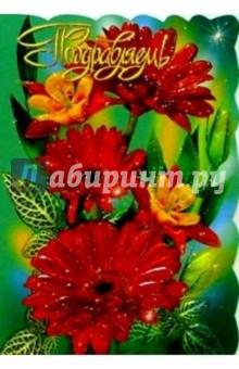 25316/Поздравляем/открытка вырубка двойная