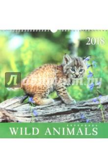 Календарь на 2018 год Дикие животные (настенный, квадратный) (КПКС1805)Настенные календари<br>Средний календарь на 2018 год, настенный, квадратный.<br>Крепление: спираль.<br>