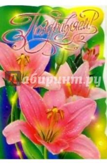 25301/Поздравляем/открытка-вырубка двойная