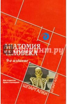 Швырев Александр Андреевич Анатомия человека для студентов вузов и колледжей