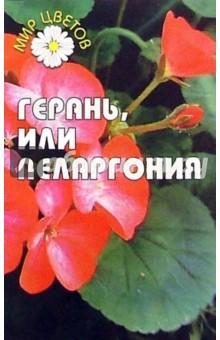 Слободчикова Елена Герань, или пеларгония