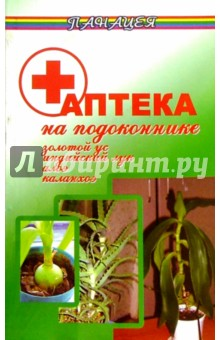 Аптека на подоконнике: Золотой ус, Индийский лук, Алоэ, Каланхоэ