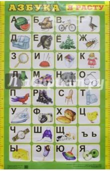 Плакат: Азбука (А1, зеленая)