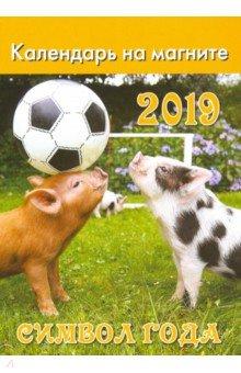 Календарь 2019 отрывной на магните. Символ года-2