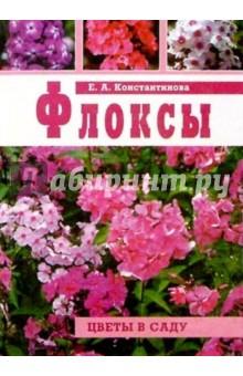 Константинова Е. А. Флоксы