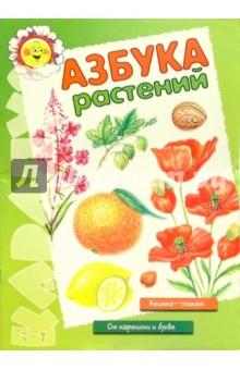 Азбука растений. Книжка - плакат (5-7 лет)