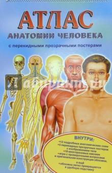 Атлас анатомии человека с перекидными прозрачными постерами (большой)
