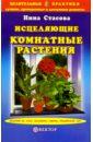 Исцеляющие комнатные растения