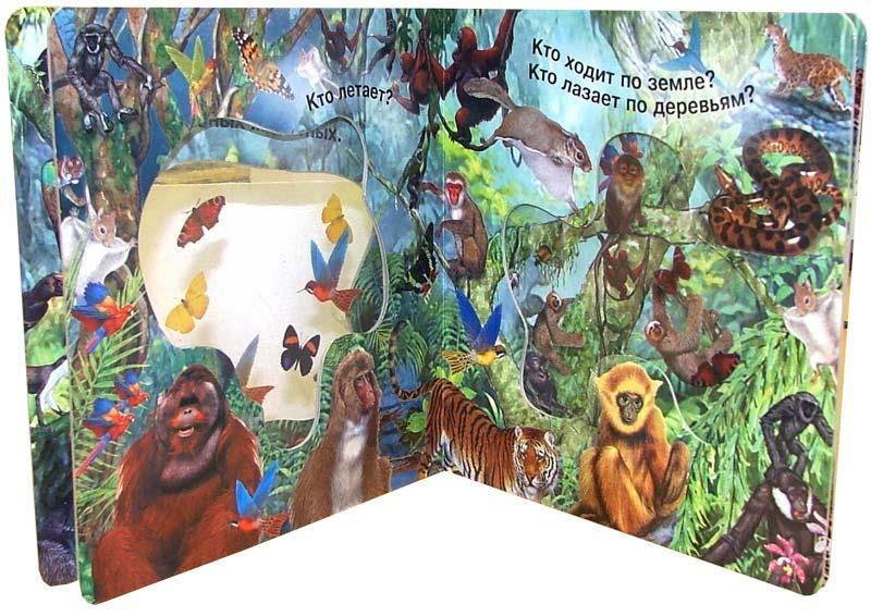 Иллюстрация 1 из 6 для Кто живет в джунглях. Волшебное окошко-макси   Лабиринт - книги. Источник: Лабиринт
