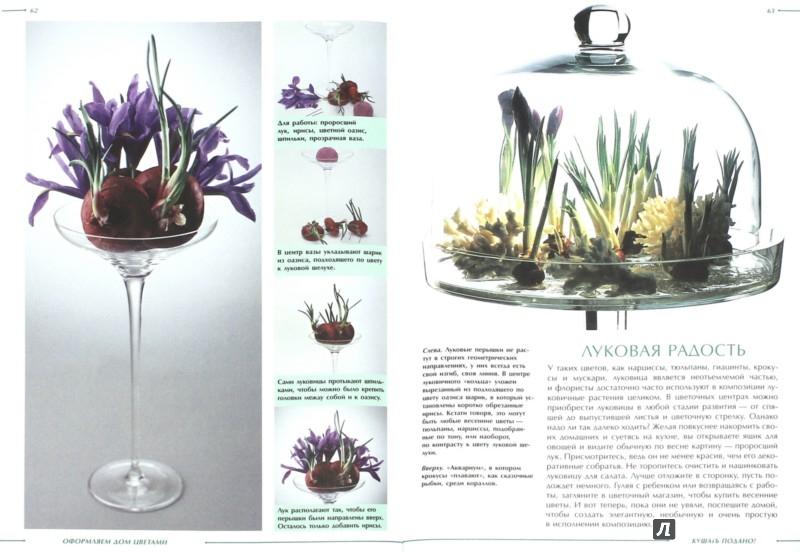 Иллюстрация 1 из 8 для Оформляем дом цветами - Анастасия Анисимова   Лабиринт - книги. Источник: Лабиринт