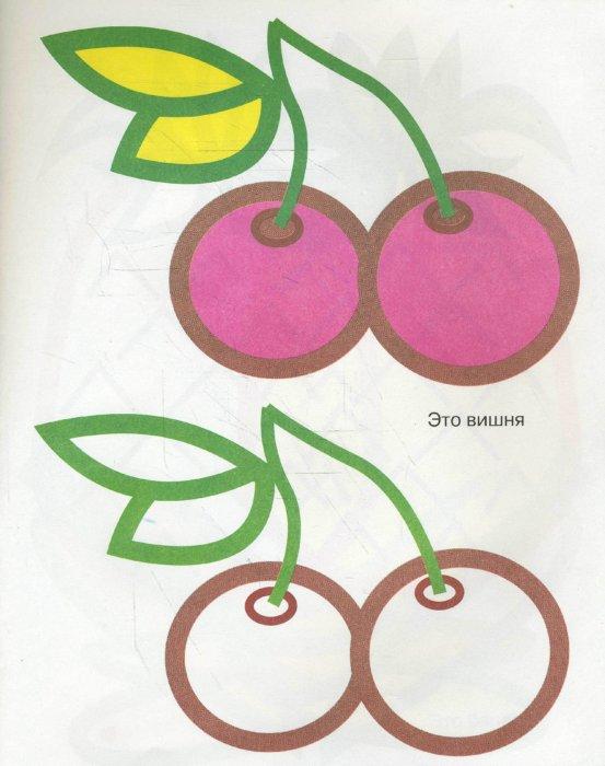 Иллюстрация 1 из 4 для Раскрашивай правильно: Фрукты | Лабиринт - книги. Источник: Лабиринт