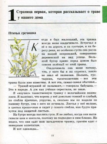 Книга зеленые страницы ягель читать онлайн