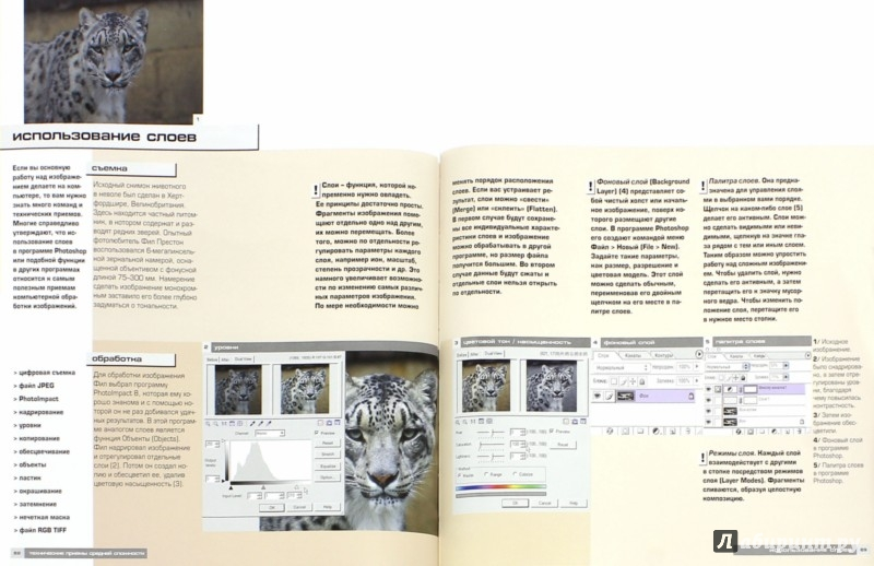 Иллюстрация 1 из 9 для Цифровая черно-белая фотография. Практическое пособие - Джон Клементс | Лабиринт - книги. Источник: Лабиринт