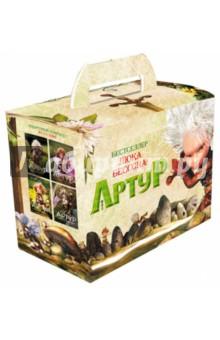 Артур (подарочный комплект из 4-х книг)