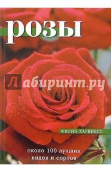 Розы. Около 100 лучших видов и сортовСадовые растения<br>Розы - наиболее распространенные и любимые садовые растения. Книга поможет вам вырастить розы и получить не только хорошие результаты, но и огромное удовольствие. Дается описание лучших видов и сортов роз, таких как кустовые розы (флорибунда чайно-гибридные), кустарниковые и плетистые. Практические советы по подбору, посадке и уходу за растениями помогут вам создать цветущий сад без лишних усилий.<br>Для широкого круга читателей, садоводов-любителей. <br>Цветные фотографии Стива Вустера.<br>Бумага мелованная.<br>