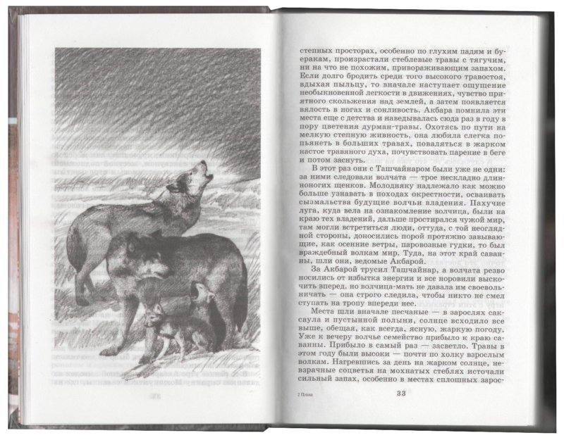 Иллюстрация 1 из 2 для Плаха - Чингиз Айтматов   Лабиринт - книги. Источник: Лабиринт