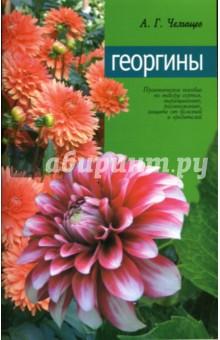 Георгины - Анатолий Челищев