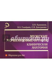 Мужские мочеполовые органы: Клиническая анатомия: Учебное пособие - Александр Краюшкин