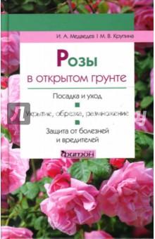 Розы в открытом грунте - Медведев, Крупина