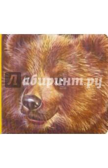 Детям о животных: Медвежонок - С. Зайцева