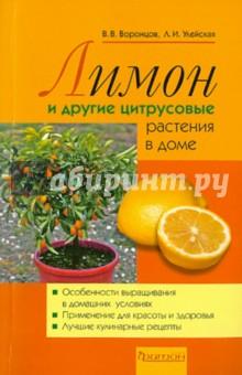 Лимон и другие цитрусовые растения в доме - Воронцов, Улейская