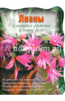 Лианы и вьющиеся растения в вашем доме