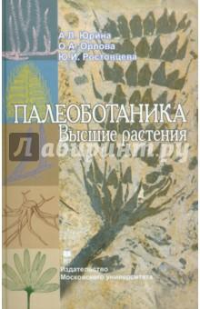 Палеоботаника. Высшие растения. Учебное пособие - Юрина, Орлова, Ростовцева