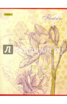 Тетрадь 48 листов Proff. Flowers клетка (6485125120)