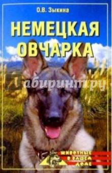 Немецкая овчарка - Ольга Зыкина