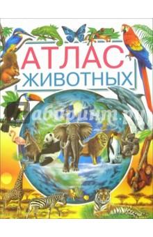 Атлас животных - Лаура Камбурнак