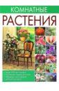 Ольга Сладкова - Комнатные растения обложка книги