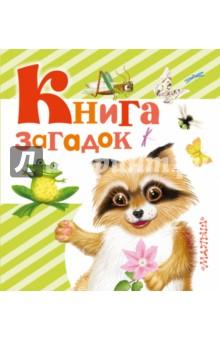Книга загадок - Валентина Дмитриева