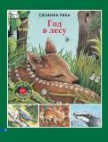 Сюзанна Риха - Год в лесу обложка книги
